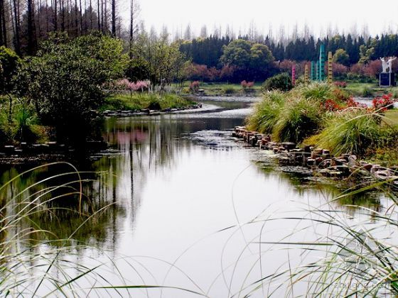 中秋节崇明岛森林公园一日游[上海]